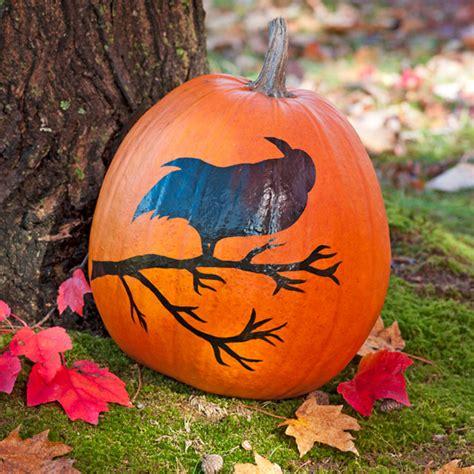 no carve pumpkin designs and decorating ideas