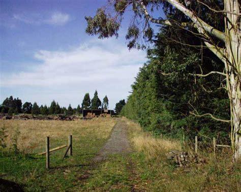 Craigslist Seattle Farm And Garden by Farm Garden