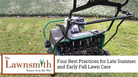 late summer lawn care blog