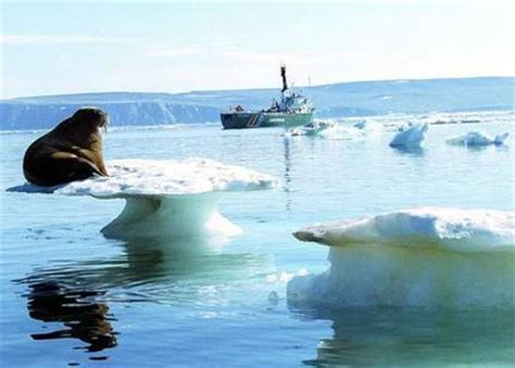 Arctic Shelf Melting by Arctic Melting Greenhouse Effect Blamed Environment