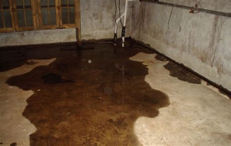 select basement waterproofing basement waterproofing