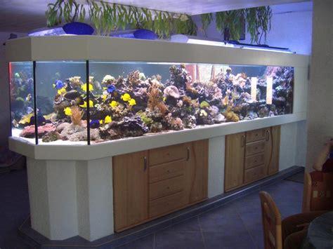 120 liter meerwasseraquarium aquarienbau meerwasser