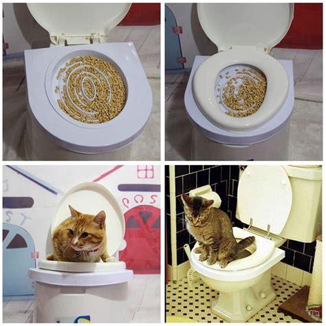 cat toilet training seat kit litter box pet supplies