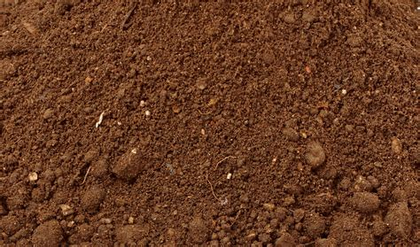 image gallery topsoil