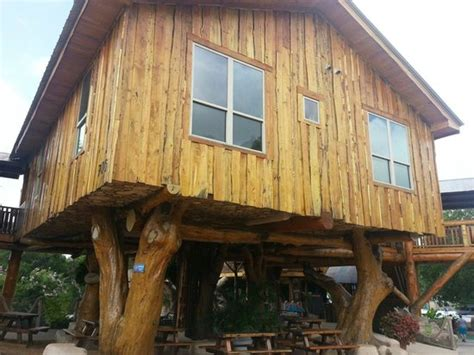 treehouse new braunfels treehouse accommodation picture of schlitterbahn new
