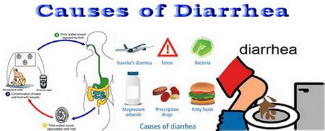 what causes a to diarrhea causes of diarrhea flickr photo