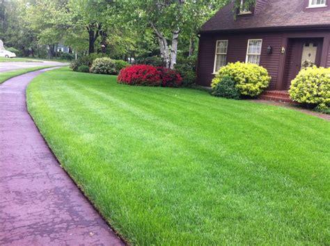 massachusetts lawn care landscape design lawn care ma