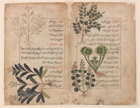 file folio from a kitab i hasha ish the book of