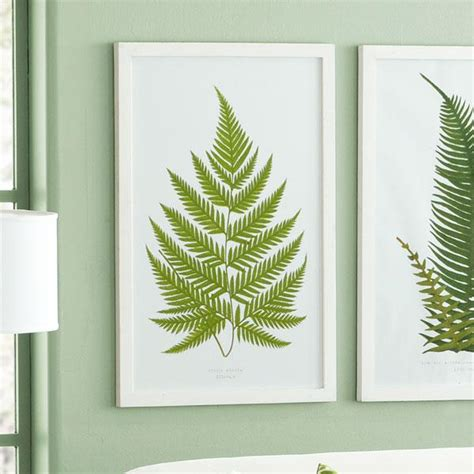 fern decor perennial fern prints 226 english wall art wisteria