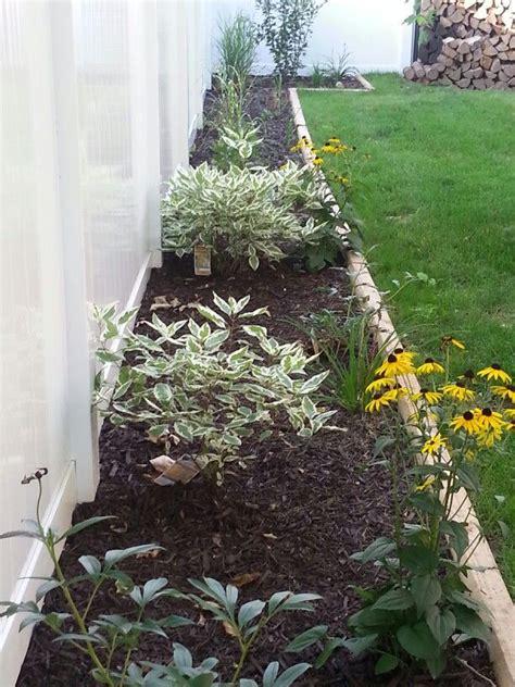 fence line landscaping garden