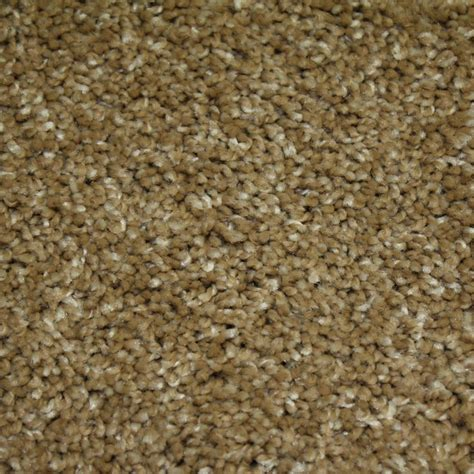 home decorators collection carpet sle wholehearted ii color vanilla frost twist 8 in x 8 home decorators collection carpet sle shackelford ii