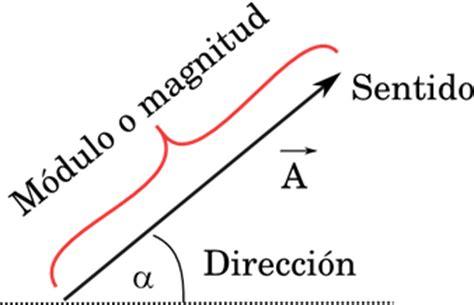 imagenes vectoriales caracteristicas vectores f 237 sica de nivel b 225 sico nada complejo