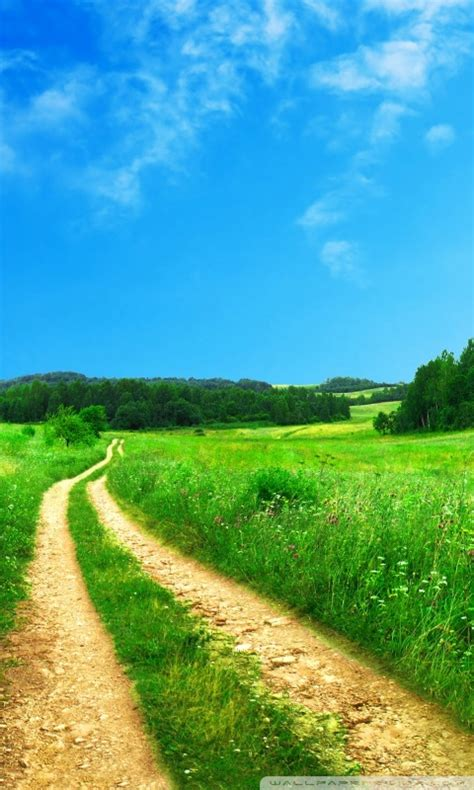 nature themes download for mobile photo collection 800 800 hd wallpaper