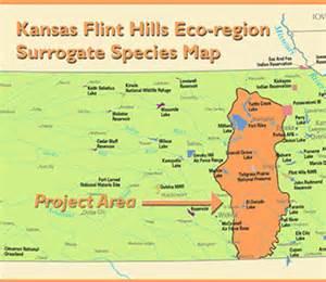 flint map flint surrogate species