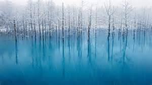 Most Beautiful Colors Biei In Hokkaido Japan Kent Shiraishi Nature Pinterest