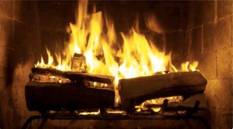 Netflix Fireplace by Netflix Report Of The Croods Raze