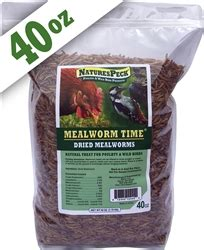 naturespeck dried mealworms 40 oz