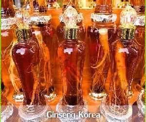 Ginseng Di Korea manfaat dan khasiat ginseng korea aneka manfaat