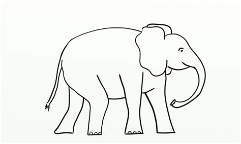 elephant outline coloring pages best photos of african elephant template elephant