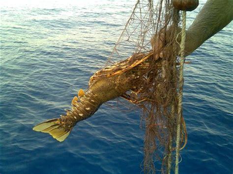 vacanze scopello pesca turismo vacanza scopello castellammare golfo