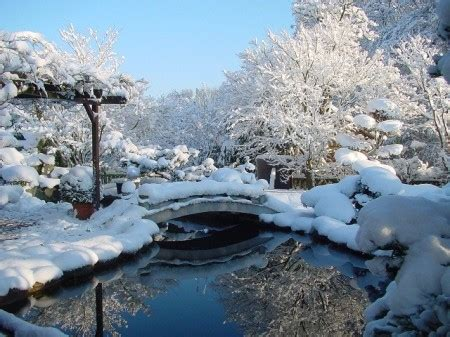 garten winter japanischer garten winter