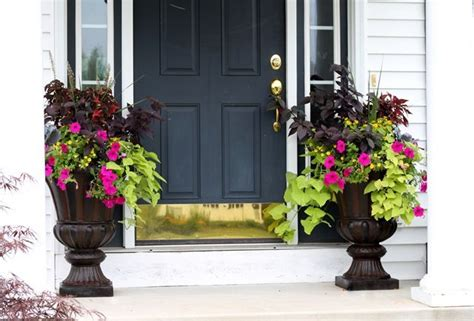Container Plant Ideas Front Door by Plants For Front Door Urns Home Decor And Organization