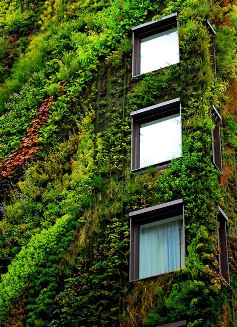 Living Wall Garden Vertical Garden Mur V 233 G 233 Tal Living Walls By