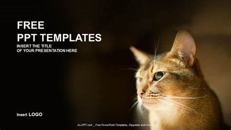 cat powerpoint template reddish nature ppt templates