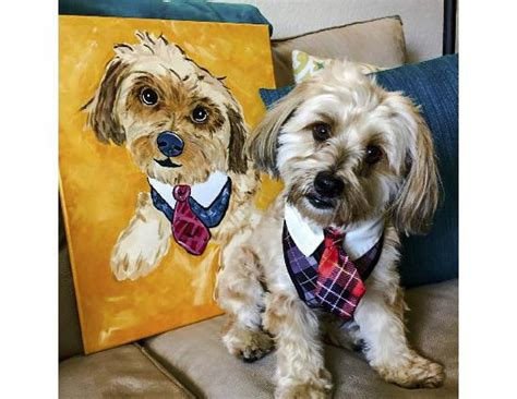 painting with a twist lansing paint your pet painting with a twist panama city all you need to