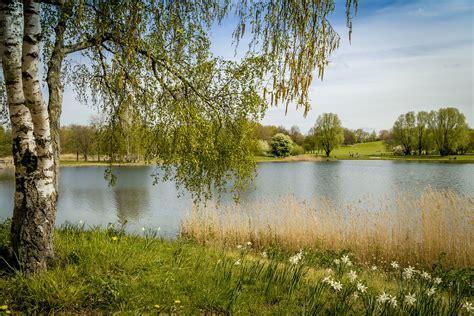 Britzer Garten Tiere by Kostenloses Foto Britzer Garten Berlin Natur