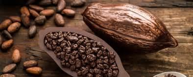 191 De Verdad El Chocolate Es M 193 S Saludable