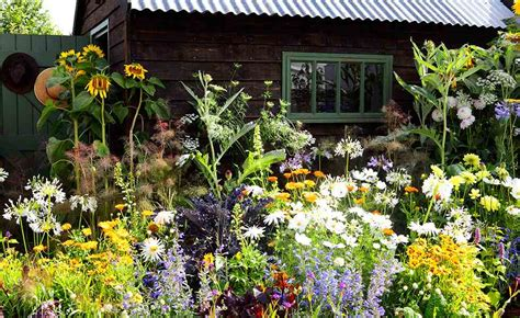 how to start a cottage garden how to create a cottage garden period living
