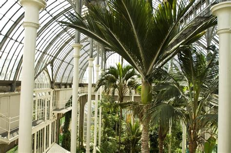royal botanic garden edinburgh edinburgh parks
