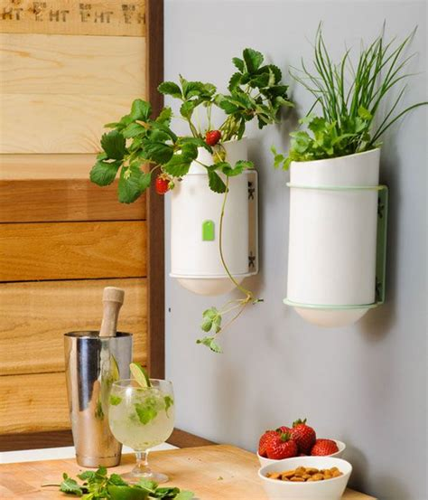 unique kitchen wall d 233 cor ideas decozilla