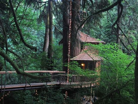 seattle treehouse point featured in animal planets charming treehouses are unique getaway near seattle