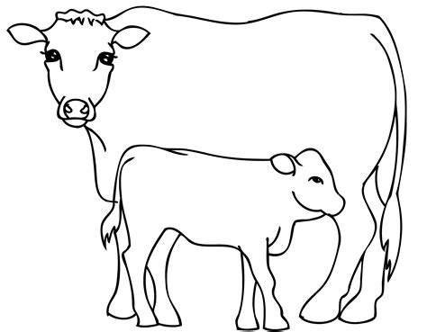 cow with bull calf coloring pages for kids bnl