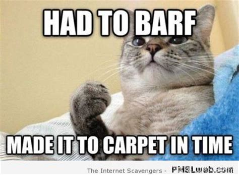 Barf Meme - monday funnyness the right way to start the week pmslweb