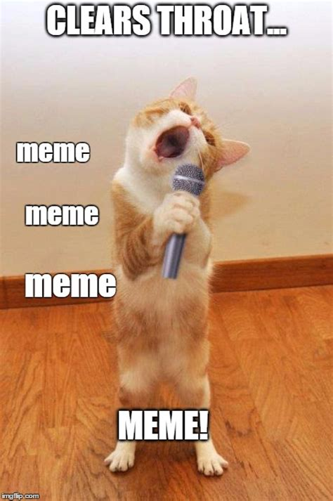 Singing Cat Meme - singingcat imgflip