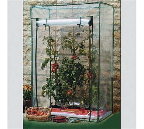 Tomaten Auf Dem Balkon 5347 by Der Balkon Naschgarten Tomaten Anbau Leicht Gemacht