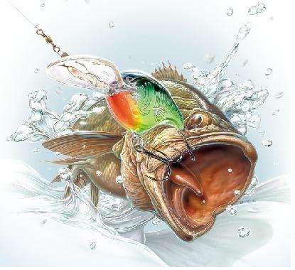 bass fishing a beginners guide to bass fishing books bass fishing tips free bass fishing tips most