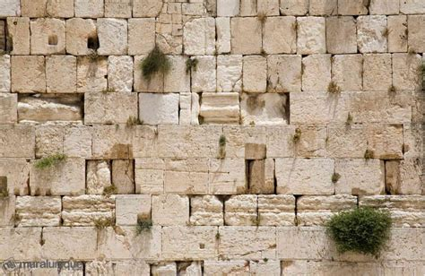 western wall mural western wall jerusalem buy prepasted wallpaper murals muralunique