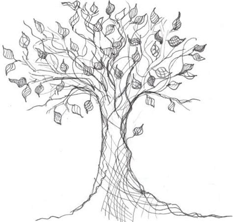 Bonsai Coffee Table Family Tree Drawings Google Images Search Engine Design