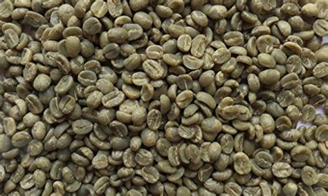 best green coffee best green coffee beans for roasting brewing bros