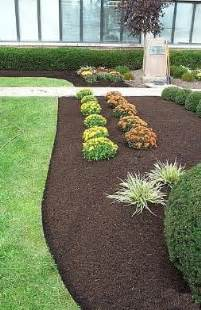 proper installation of bark mulch how to avoid common