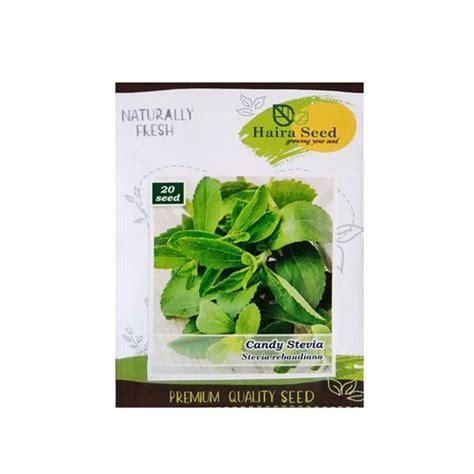Benih Stevia jual benih daun stevia manis 20 biji haira seed