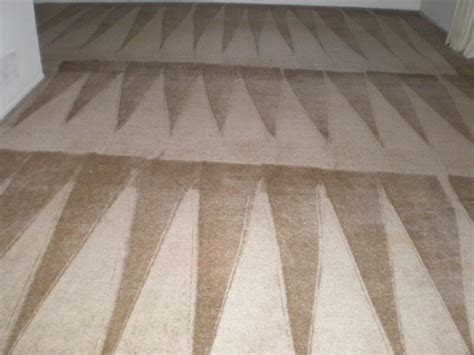 national carpet and upholstery cleaning photo gallery national carpet cleaning