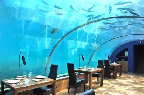 ithaa undersea restaurant prices a lovely day picture of conrad maldives rangali island