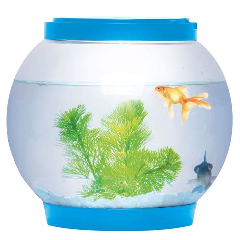 betta fish tank light round glass goldfish fish bowl tank with colour led light