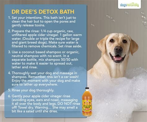 dogs naturally magazine dr s detox bath recipe dogs naturally magazine