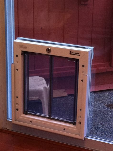 Doggie Door In Glass How To Install The Door For Sliding Glass Doors Homeliness